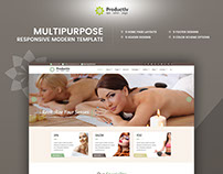 Productiv Multipurpose Responsive Website