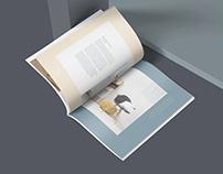 Brochure - Safeer Tower