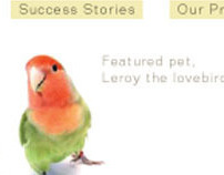 Ally web site
