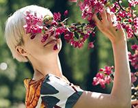Blossom (Photography)