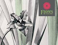 Peças de divulgação | Exposição de Orquídeas