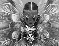 Anti Denim 666 Frames Art Project