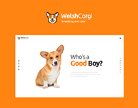 Welsh Corgi | Dog Breeding and Sale WP Theme