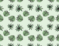 Succulent Inspried Pattern