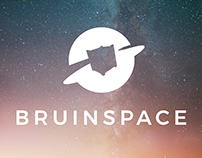 Bruin Space Group Branding