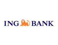 ING Bank Various Projects