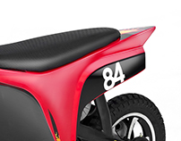 Easy Vehicle - Electric Pit Bike PDA 250