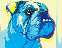 Contemporary Portraits - Digital Drawing #20