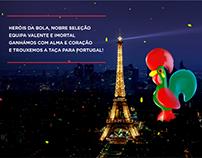 Paladin com Portugal no EURO 2016