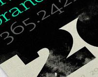 2011 Brand New Day Poster Calendar
