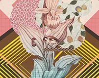Cintia poster
