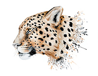 Water color painting of a leopard