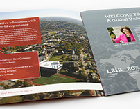 WPI International Viewbook
