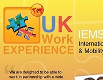 UK Work Experience, Group Project