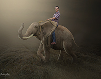 Elephant Ride | Photoshop Manipulation Tutorials
