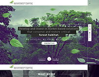 Rainforest Capital UI - web design.