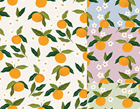 Gouche Oranges Pattern Design