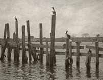 Photographs - Pensacola, Florida