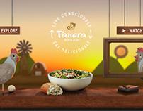 Panera Bread — Live Consciously / Eat Deliciously