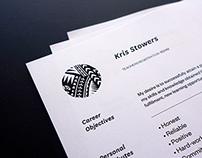 CV Design 2013