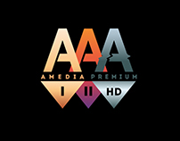Brand Book for Channel Amedia