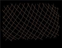 HAPPY TOGETHER 徐珮芬X法蘭《夜行性動物》發表會 主視覺