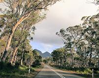 Tasmanian Melodies