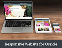 New responsive WordPress website for Ossicle