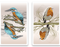Birds illustration concept