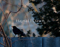 Hajnal | Dawn - photo diary