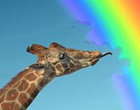 Skittles: Drain the Rainbow