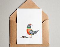 "Postcard ""Pigeon"""