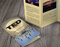 TED Talks - Ideas dignas de difundir [Folleto]