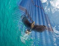 Underwater view of Burj Khalifa
