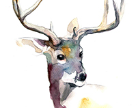 Woodland animals - watercolor paintings