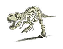 T.Rex through a design course