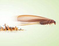 BASF Trelona (Ant Bait) Ads