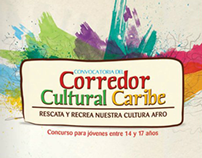 Brochure Organización de Estados Iberoamericanos (OEI)
