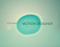 Showreel Motion Design 2013