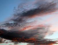Cloud from the Garden