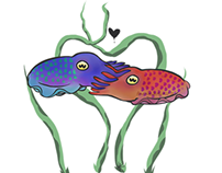 """Cuddlefish"""