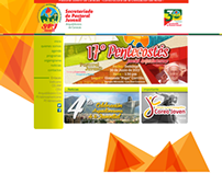 Website PJ Caracas