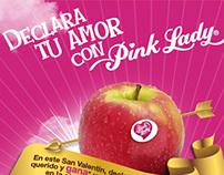Pink Lady - Declara tu Amor