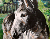 A donkey on a cardboard