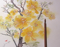 Ochna-STEP BY STEP -watercolor