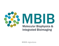 Molecular Biophysics & Integrated Imaging (MBIB) Logo
