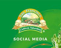Germinados San Francisco, Social Media.