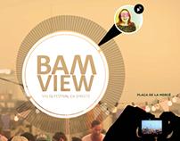 BAM View