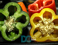 Vegetable Photography