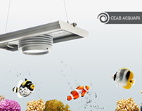 CEAB acquari